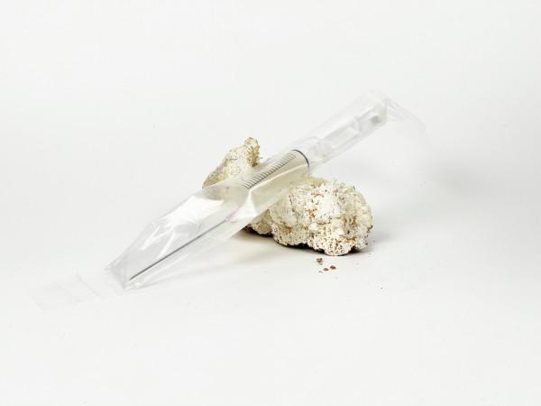Igelstachelbart selektierte Mykospritze